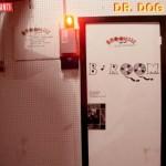 Dr Dog: B-Room
